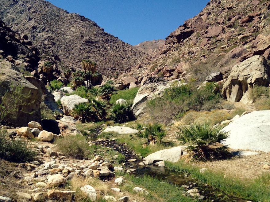 anza-borrego-trail-880web
