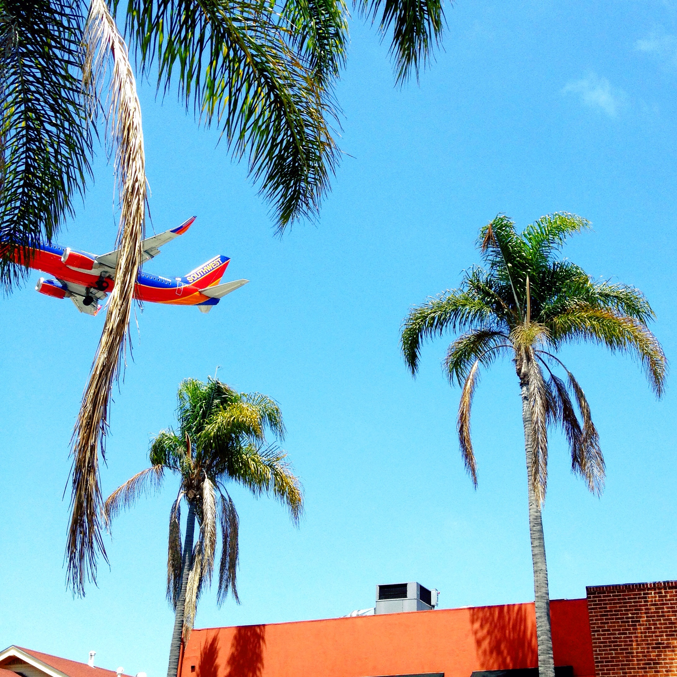 sandiego-littleitaly-flight