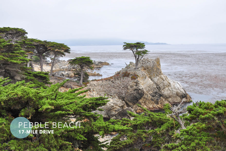 Roadtrip-carmel-cypress-880