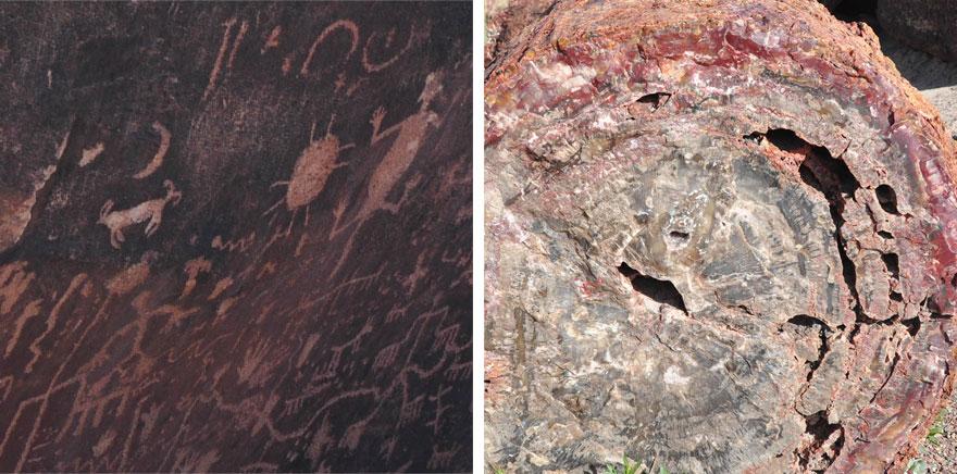 Petrified-rock-duo-squares-880web Petrified Forest National Park, petrified wood, petroglyph